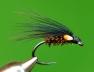 cormorant-web