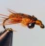 gares-crorixidae