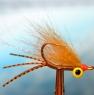 ndo-permit-fly-web