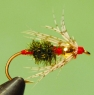 red-butt-soft-hackle