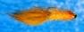 silviaa-balanced-fly