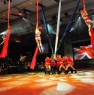Aerialists at the British Show