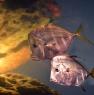 webfish753